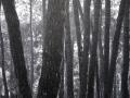 arcilla_pintura_paisajes (40)